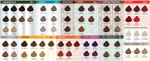 6 pasos para hacer un diagnóstico de color