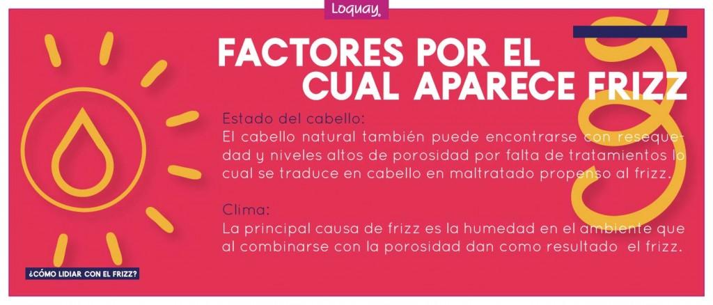 Factores del Frizz-03