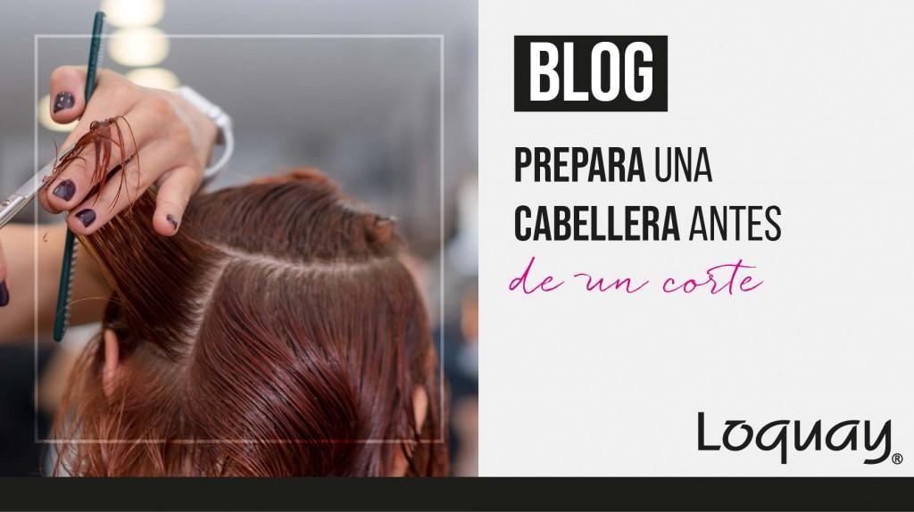 Prepara el cabello corte-05