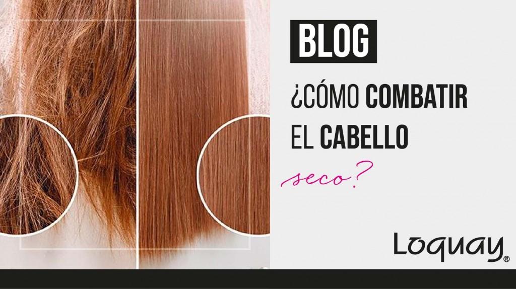 cabello seco-02