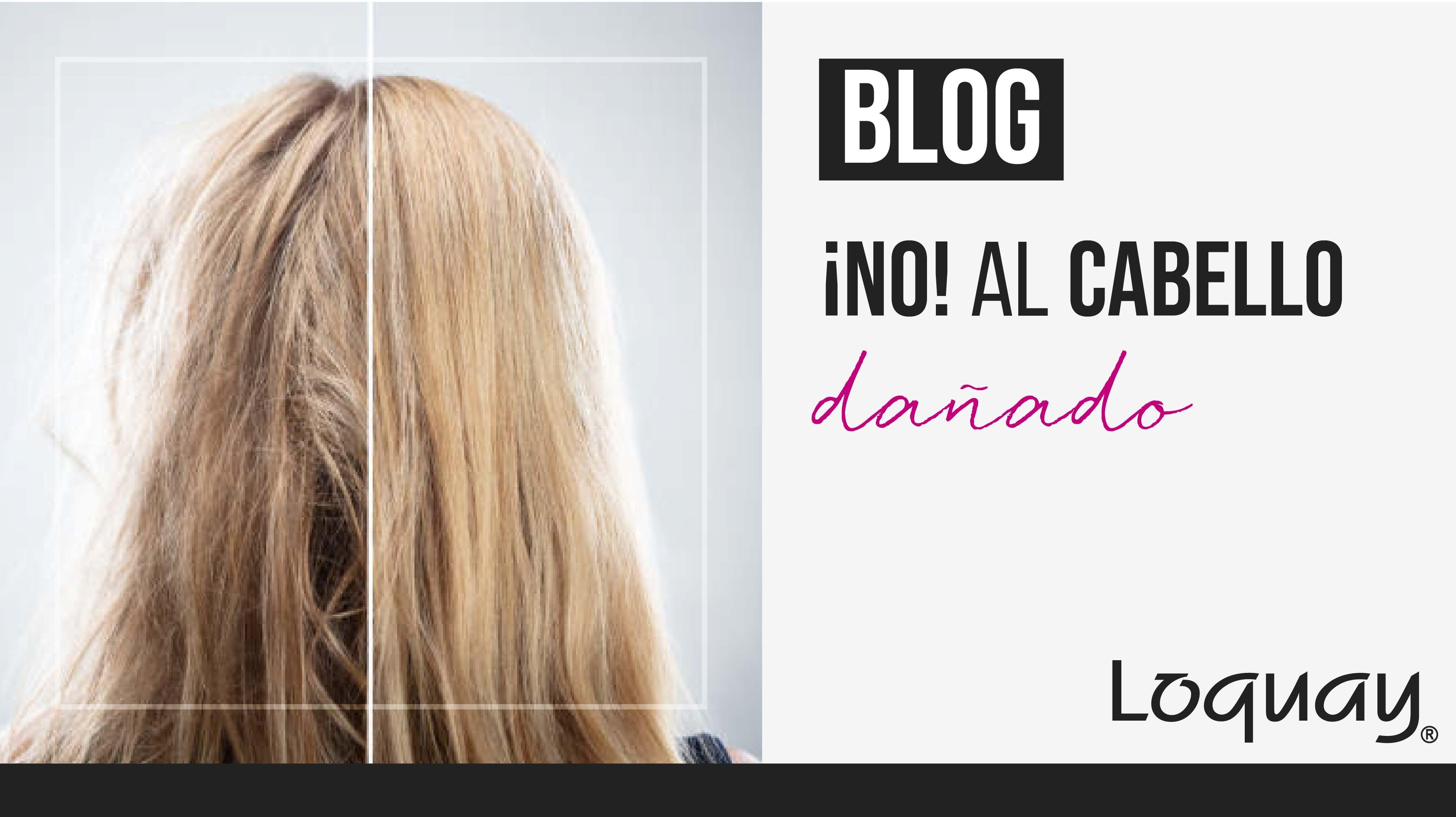no al cabello maltratado-06