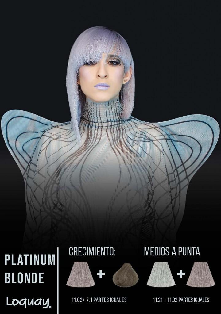 Ice platinum-05